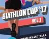 Biathlon 2017